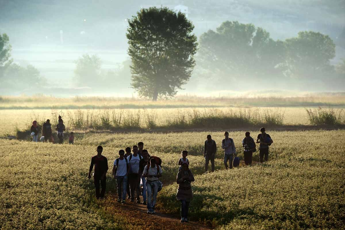 Migrants walk through a field to cross the border from Greece to Macedonia near the Greek village of Idomeni on August 29, 2015.