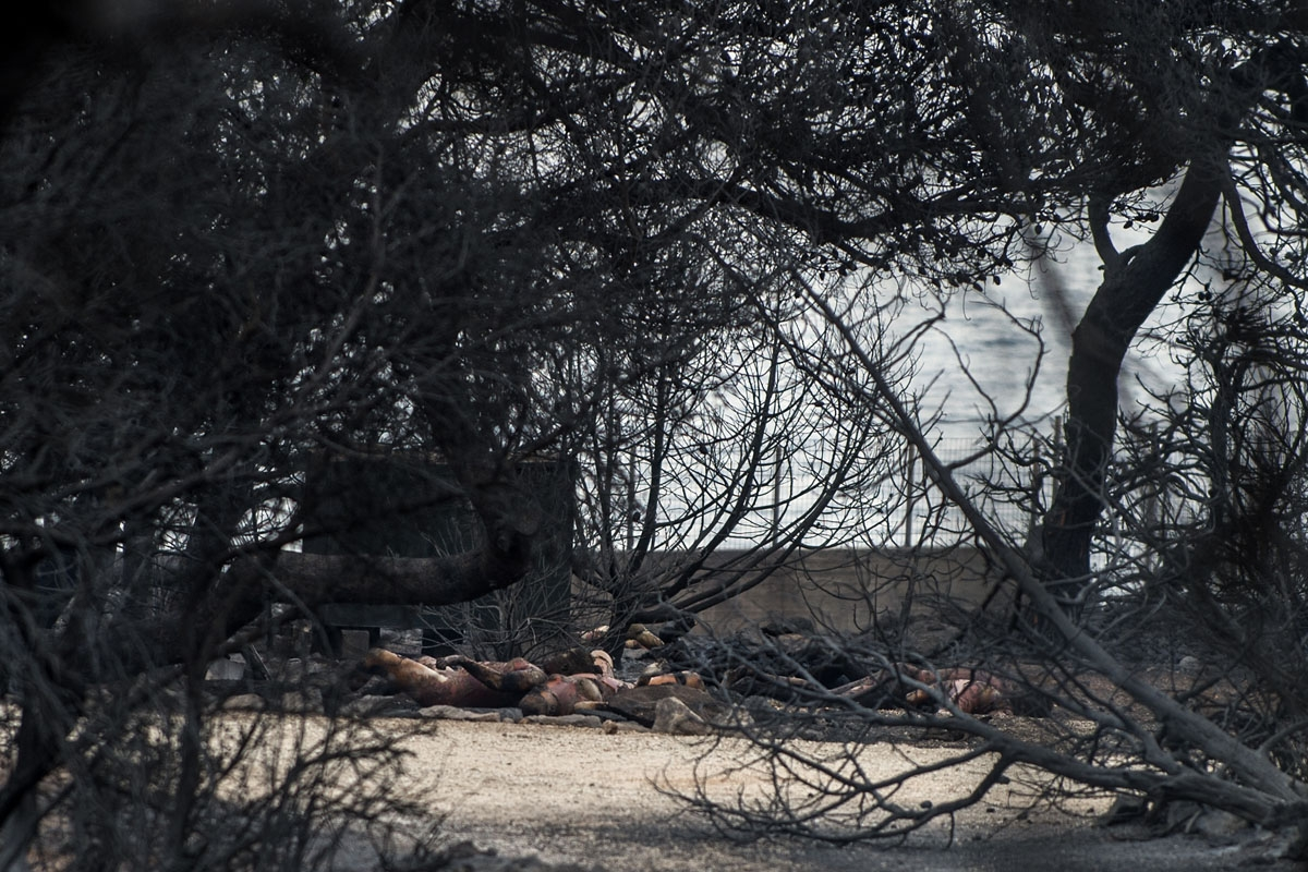 This photo taken on July 24, 2018 show dead people following a wildfire at the village of Mati, near Athens, on July 24, 2018.