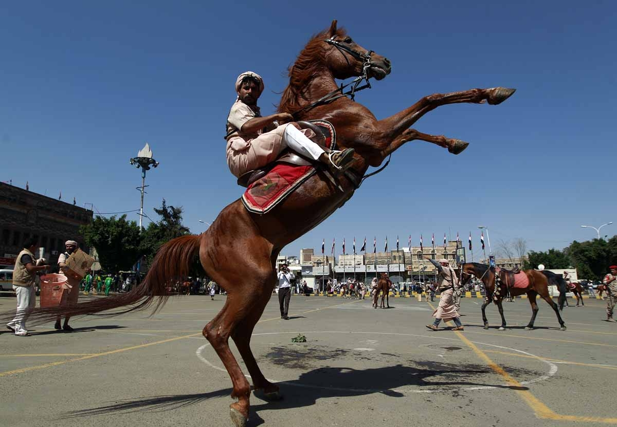 A Yemani man in traditional clothes performs on a horse during a parade in the capital Sanaa on May 21, 2016, on the eve of the 26th anniversary of Yemen's 1990 reunification.