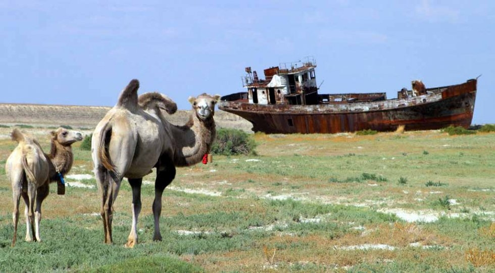 A rusted ship rests on the dried-up bed of the Aral Sea. August, 2005.