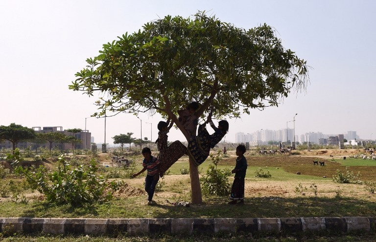 Nomadic children play on a tree in Faridabad