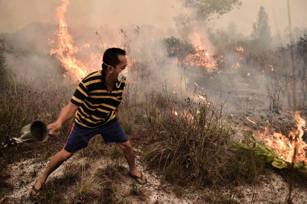 A villager tries to extinguish a peatland fire on the outskirts of Palangkaraya.