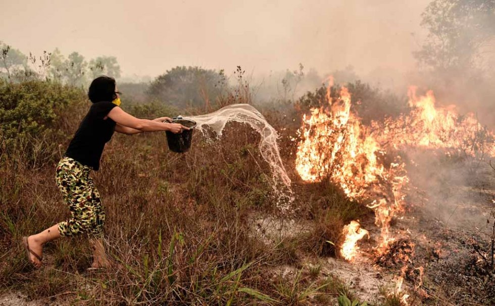 A woman tries to douse a peatland fire on the outskirts of Palangkaraya in late October.