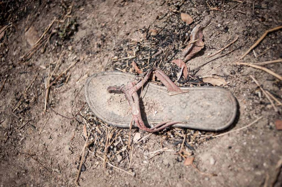A shoe lies in the rubble of the school. March, 2016.