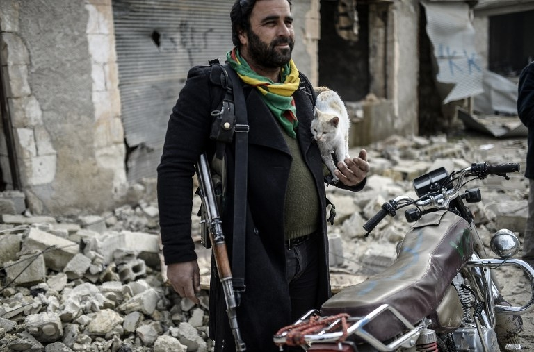 A Kurdish fighter holds a cat in Kobane, Syria on January 28, 2015