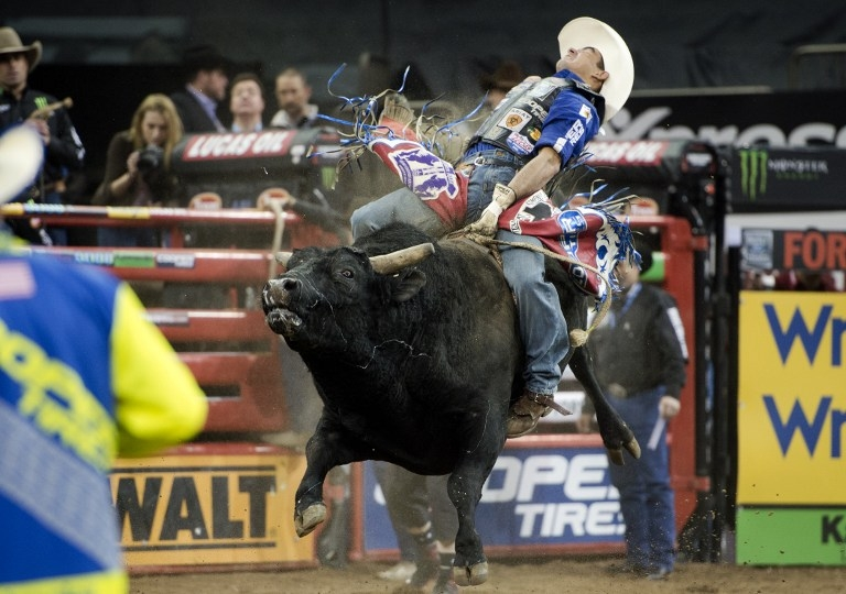 Billy Robinson rides 'Western Way' at the PBR Monster Energy Buck-Off on January 16, 2015