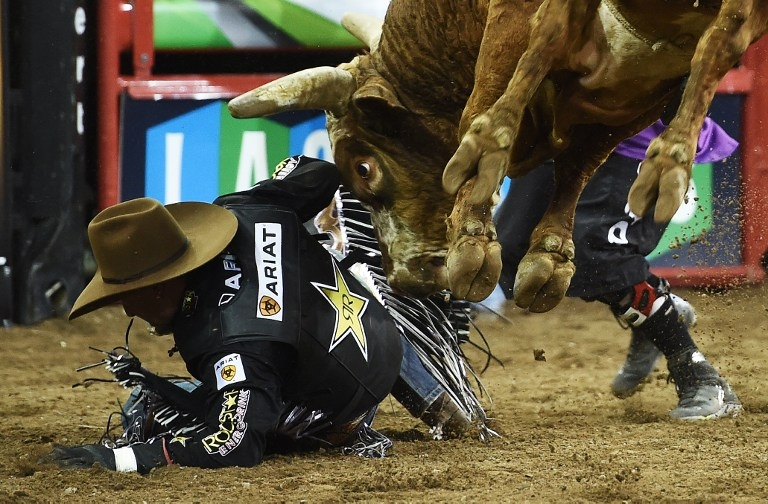 Joao Ricardo Vieira falls off 'Fun Size' at the PBR Monster Energy Buck -Off on January 16, 2015