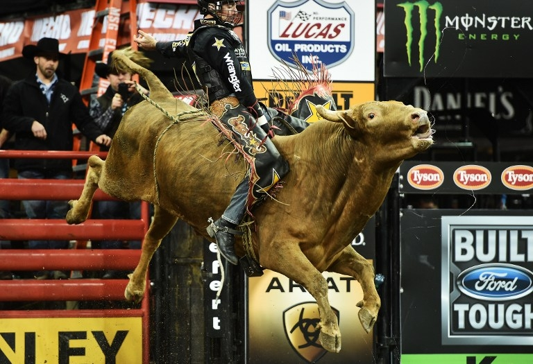 Sean Willingham rides 'Mr. U' at the PBR Monster Energy Buck-Off on January 16, 2015