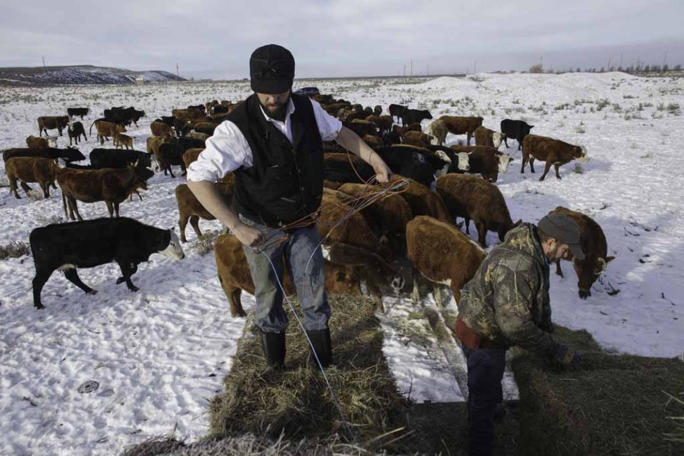 Area ranchers Tucker and Andy Dunbar on their ranch near the refuge. January 6, 2016.
