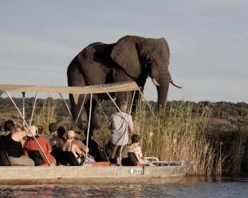 Tourists in Botswana's Chobe National Park in March 2015