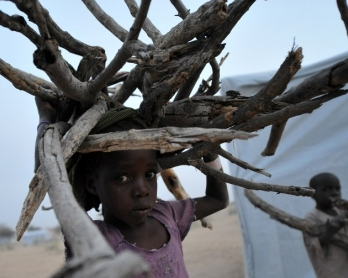 Nigerian refugee children carry wood in a UNHCR camp by Lake Chad