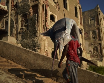 A man carrying a sailfish walks through Hamarweyne district in South Mogadishu on March 25, 2015